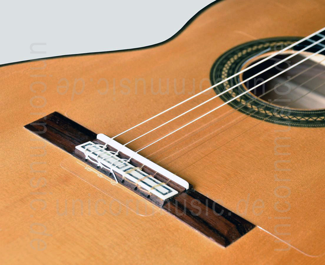 to article description / price Spanish Flamenco Master Guitar - CAMPS CONCIERTO AMAZONAS - all solid - spruce top  + case