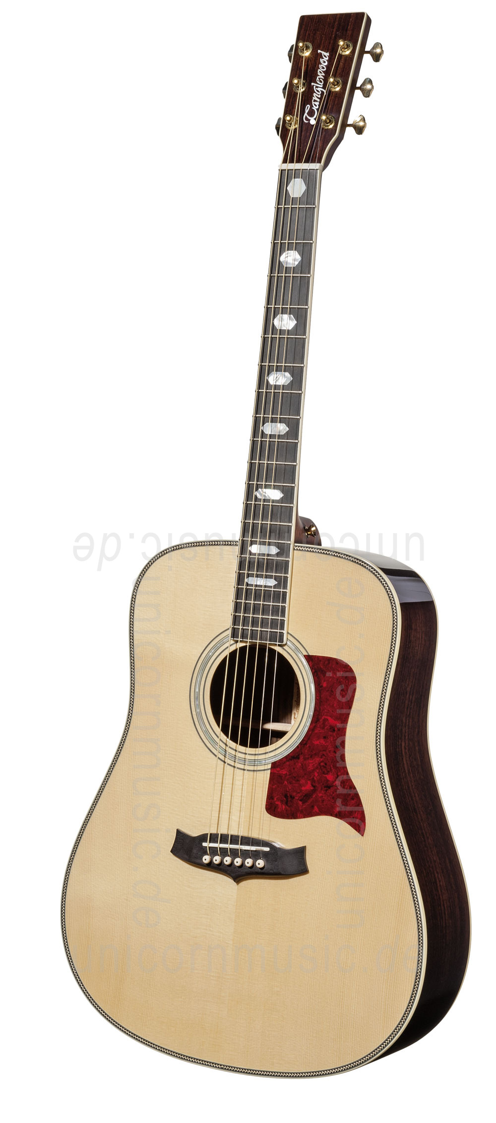 to article description / price Acoustic Guitar TANGLEWOOD TW1000/H SR - Heritage Series - Dreadnought - all solid + Hardcase