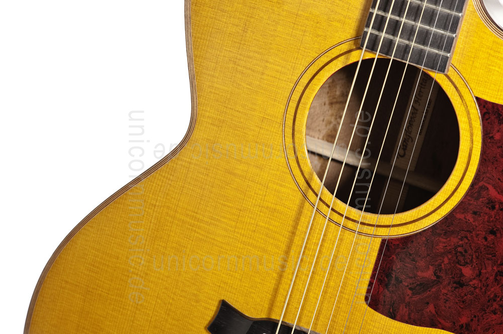 to article description / price Acoustic Guitar TANGLEWOOD TW55/H E - Heritage Series - Fishman Presys Blend - Jumbo - Cutaway - all solid